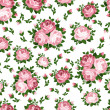 Seamless pattern with pink roses. Vector illustration. — Stock Vector