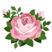 ピンクのバラ。ベクトル イラスト. — ストックベクタ