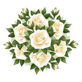 Bouquet of white roses. Vector illustration. — Stock Vector