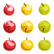 Set of nine apples. Vector illustration. — Stock Vector