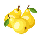 Three yellow pears. Vector illustration. — Stock Vector