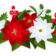Christmas bouquet with red and white poinsettias, holly and mistletoe. Vector illustration. — Stock Vector