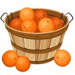 Wooden basket with oranges. Vector illustration. - Stock Vector