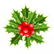Stock Vector: Christmas holly. Vector illustration.