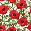 Seamless background with red poppies. Vector illustration. - Stock Vector