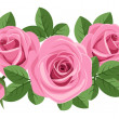 Pink roses with leaves on white. Vector illustration. - Stock Vector