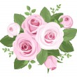 Stock Vector: Pink roses, rosebuds and leaves. Vector illustration.