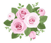 Pink roses, rosebuds and leaves. Vector illustration. — Stock Vector