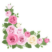 Pink and white roses, rosebuds and leaves. Vector illustration. — Stock Vector