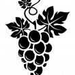 Black silhouette of grapes. Vector illustration. — Stock Vector