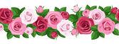 Poziomy bezszwowe tło z róż. Ilustracja wektorowa. — Wektor stockowy