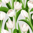 Seamless background with white tulips. Vector illustration. - Stock Vector
