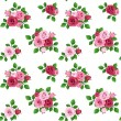 Vector seamless pattern with red and pink roses on white. — Stock Vector #25875335