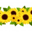 Horizontal seamless background with sunflowers and calendula. Vector illustration. — Stock Vector