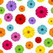 Seamless background with colored gerbera. Vector illustration. — Stock Vector