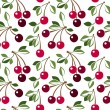 Seamless pattern with cherry. Vector illustration. — Stock Vector