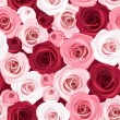 Seamless pattern with red and pink roses. Vector illustration. — Stockvector