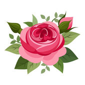 Red rose. Vector illustration. — Stock Vector