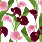 Seamless pattern with pink and purple calla lilies on white. Vector illustration. — Stock Vector