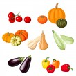 Various vegetables. Vector illustration. — Stock Vector