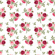 Seamless pattern with red and pink roses. Vector illustration. — Stock Vector #36106021