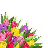 Barevné tulipány s kapkami rosy. vektorové ilustrace. — Stock vektor