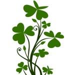 Branch of shamrock. Vector illustration. — Stock Vector