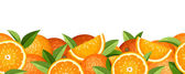 Horizontal seamless background with oranges. Vector illustration. — Stock Vector