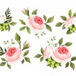Set of pink roses. Vector illustration. — Stock Vector