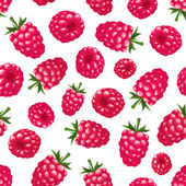 Seamless background with raspberry. Vector illustration. — ストックベクタ
