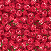 Seamless background with raspberry. Vector illustration. — Stock Vector