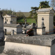 France, the cemetery of Condecourt  in Val d Oise - 图库照片