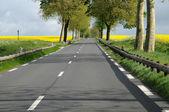 Ile de France, Maudetour, a country road in Val d Oise — Stock Photo