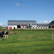 Quebec, farm in Lac lCroix — Stock Photo #14321799