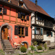 Village of Kaysersberg in Alsace — Foto Stock #14358461
