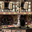 The village of Kaysersberg in Alsace — Stock Photo