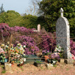France, the cemetery of Bazoches sur Guyonne - Stockfoto