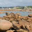 Pink granit rocks in Ploumanac h — Stock Photo #16249753