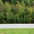 Stockfoto: Quebec, national highway in Matapediin Gaspesie