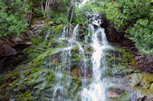 Falls in the Parc National du Forillon — Stock Photo