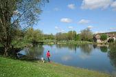 France, a pond in Brueil en Vexin — Stock Photo