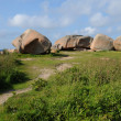 Stock Photo: Bretagne, Renote island in Tregastel
