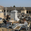 Stock Photo: France, cemetery of Montfort l Amaury
