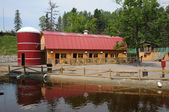 Quebec, the little farm in the Saint Felicien zoo — Stock Photo