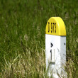 Old kilometre marker in the country - Stock Photo
