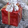 Horizontal picture of a present         — Stock Photo