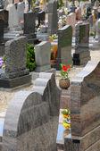 Na cmentarzu oberhausbergen w alzacji — Zdjęcie stockowe