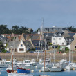 Bretagne, picturesque port of Ploumanach — Stock fotografie #21516913