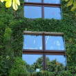 France, green wall in Paris — Stock fotografie #21517543
