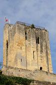 City of Saint Emilion in Aquitaine — Stock Photo